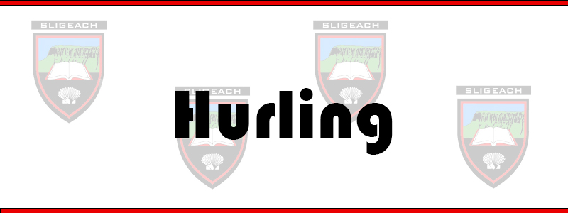 NHL 3B : Sligo 2-14 v Fermanagh 1-16